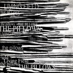 LIVING FIELD « the pillows off...